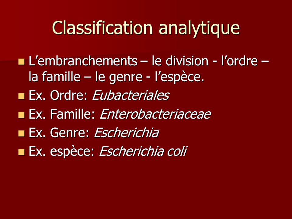 Classification analytique Lembranchements – le division - lordre – la famille – le genre - lespèce. Lembranchements – le division - lordre – la famill