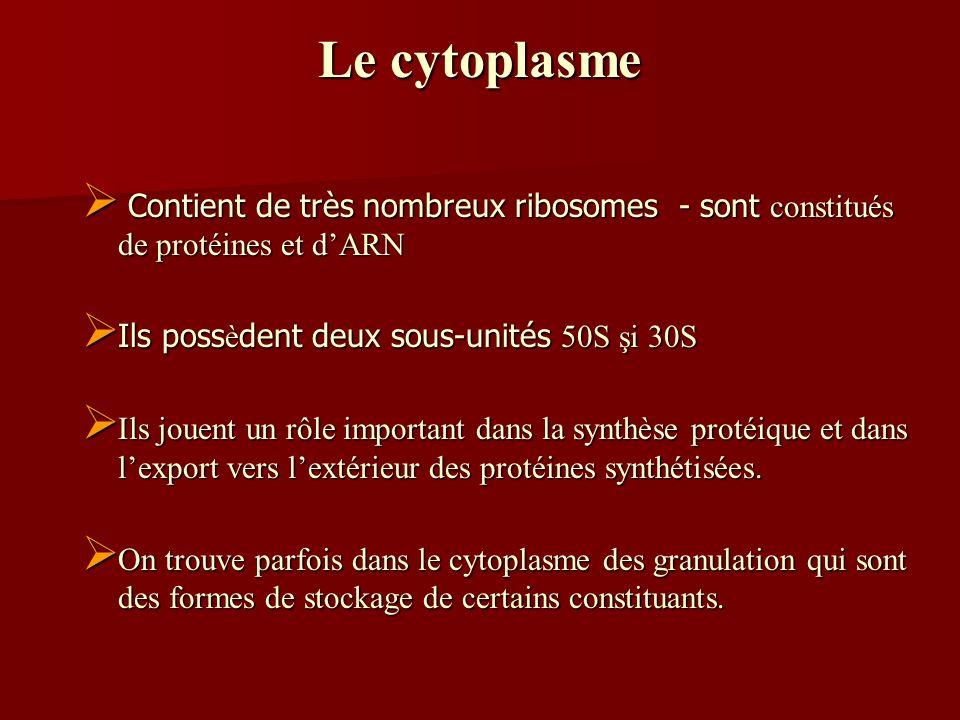 Le cytoplasme Contient de très nombreux ribosomes - sont constitués de protéines et dARN Contient de très nombreux ribosomes - sont constitués de prot