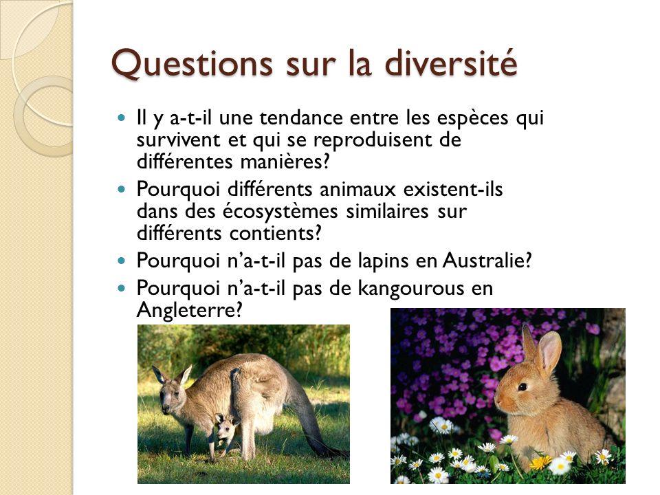 Questions sur la diversité Il y a-t-il une tendance entre les espèces qui survivent et qui se reproduisent de différentes manières? Pourquoi différent