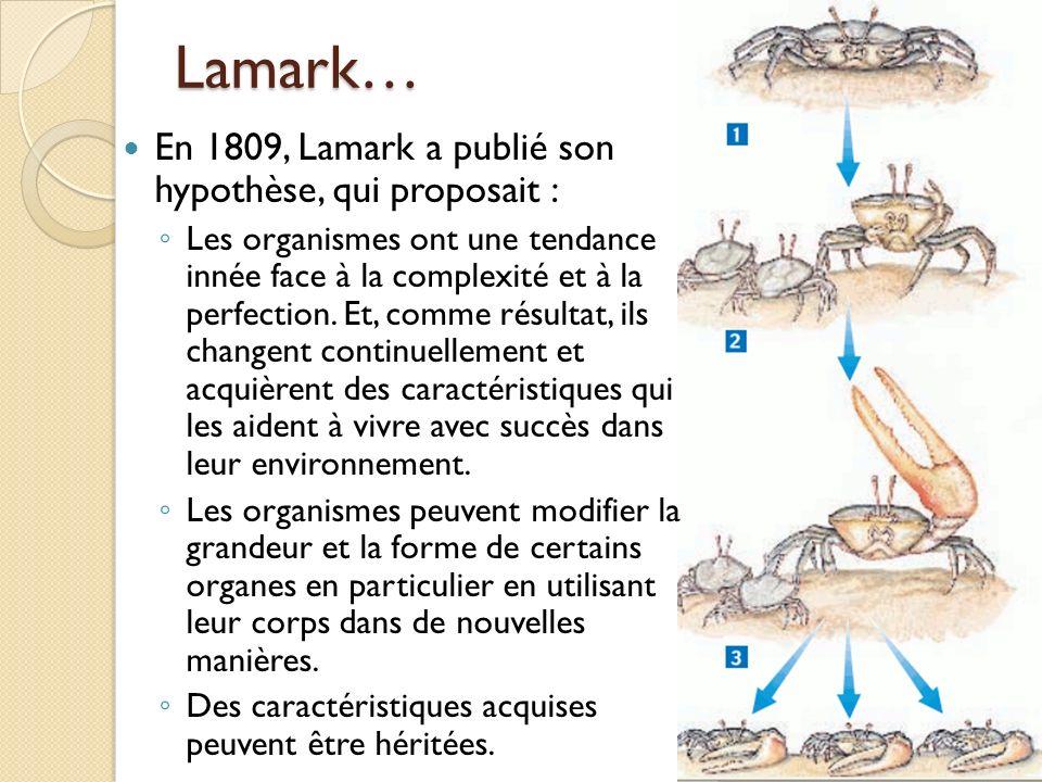 Lamark… En 1809, Lamark a publié son hypothèse, qui proposait : Les organismes ont une tendance innée face à la complexité et à la perfection. Et, com