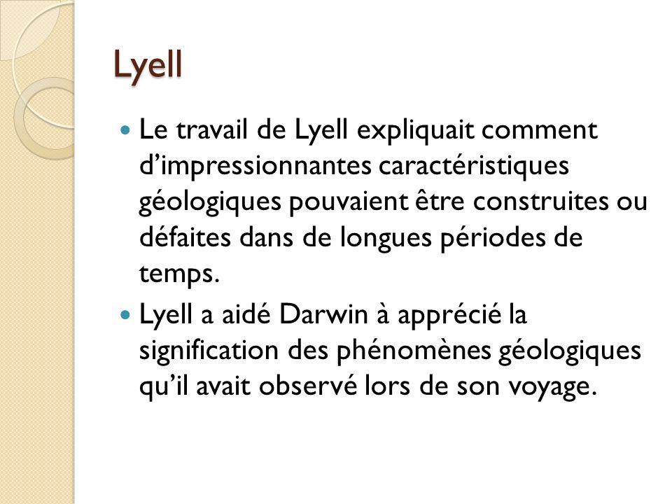 Lyell Le travail de Lyell expliquait comment dimpressionnantes caractéristiques géologiques pouvaient être construites ou défaites dans de longues pér