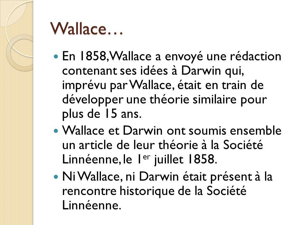 Wallace… En 1858, Wallace a envoyé une rédaction contenant ses idées à Darwin qui, imprévu par Wallace, était en train de développer une théorie simil