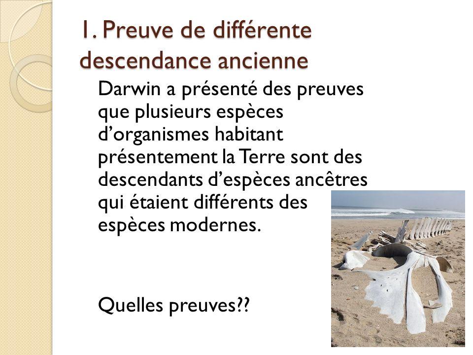 Malthus… Ceci a mené Darwin à se poser les questions suivantes : Quest-ce qui cause la mort de si beaucoup dindividus.