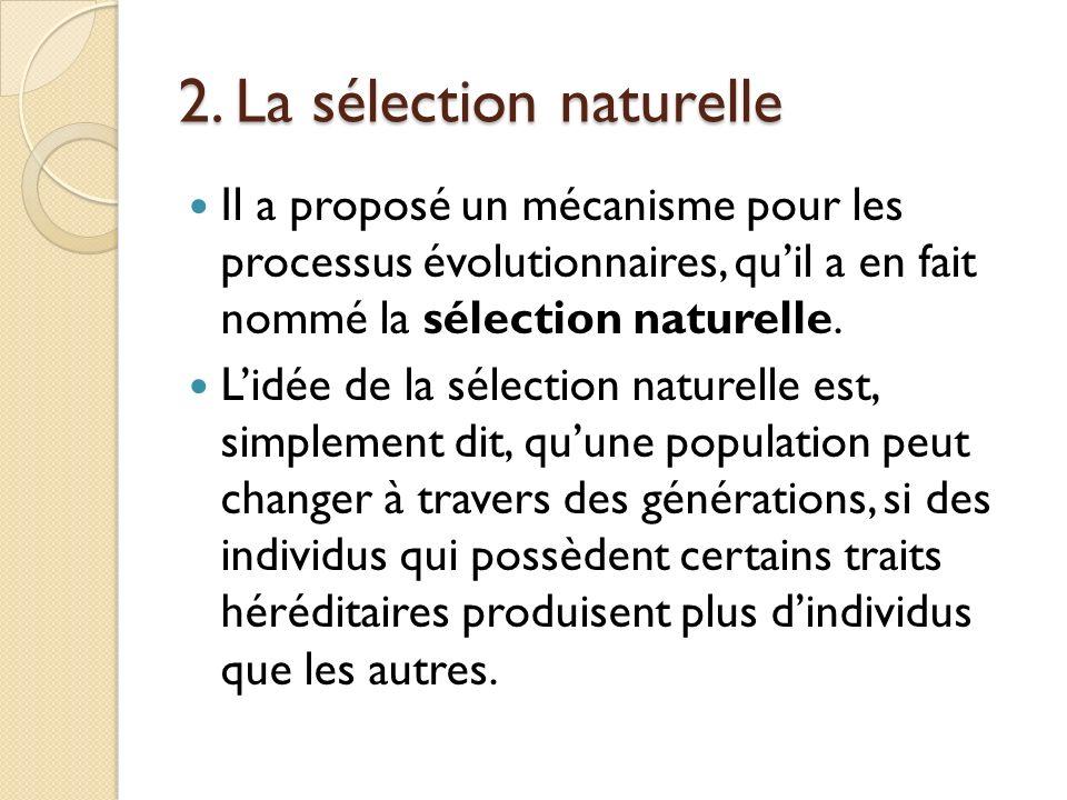 2. La sélection naturelle Il a proposé un mécanisme pour les processus évolutionnaires, quil a en fait nommé la sélection naturelle. Lidée de la sélec
