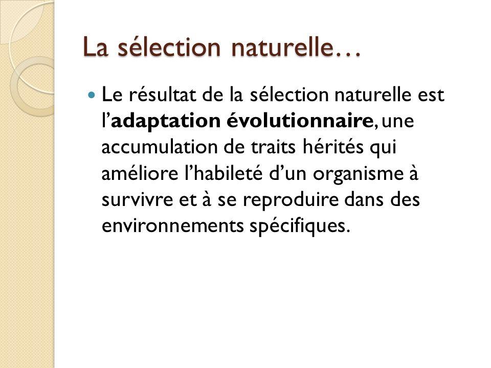 La sélection naturelle… Le résultat de la sélection naturelle est ladaptation évolutionnaire, une accumulation de traits hérités qui améliore lhabilet
