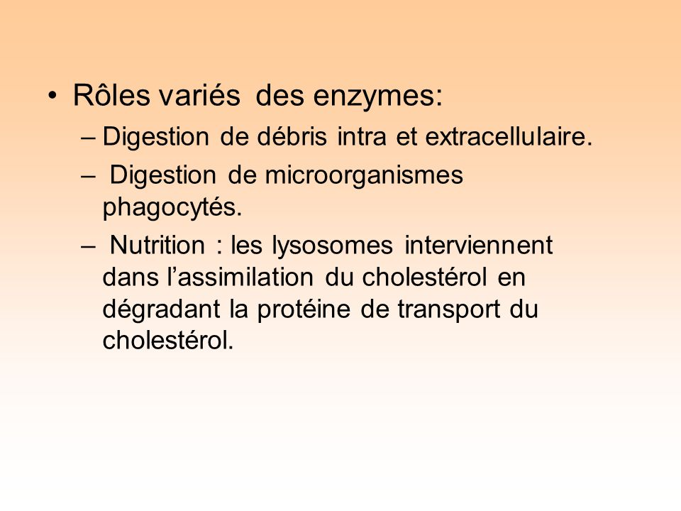 Rôles variés des enzymes: –Digestion de débris intra et extracellulaire.