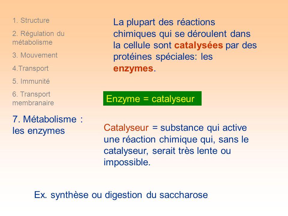 Catalyseur = substance qui active une réaction chimique qui, sans le catalyseur, serait très lente ou impossible.