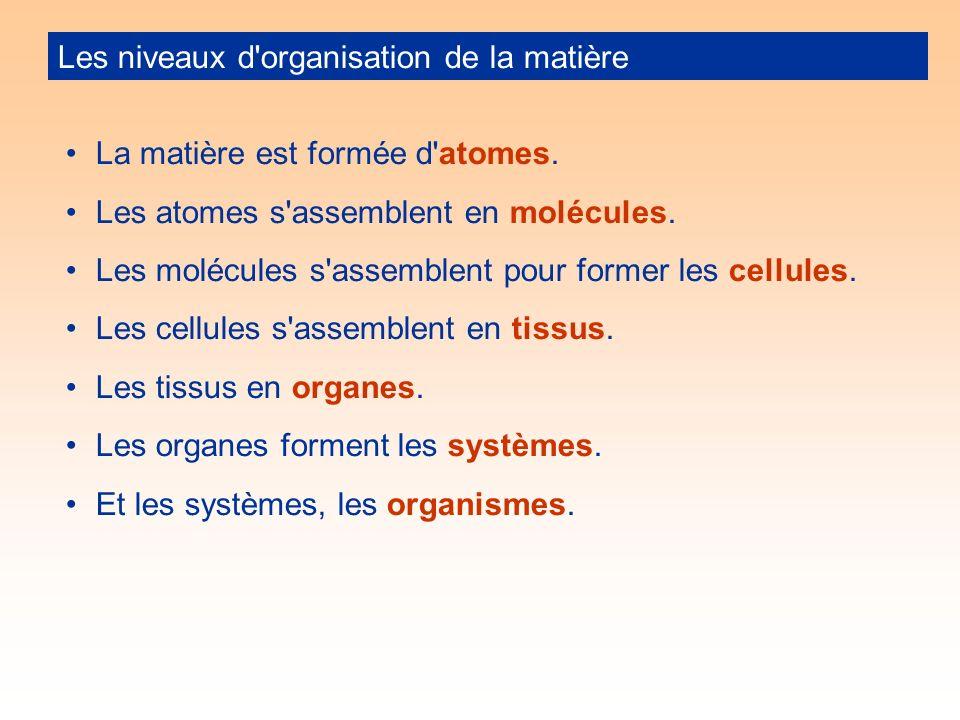Les niveaux d organisation de la matière La matière est formée d atomes.