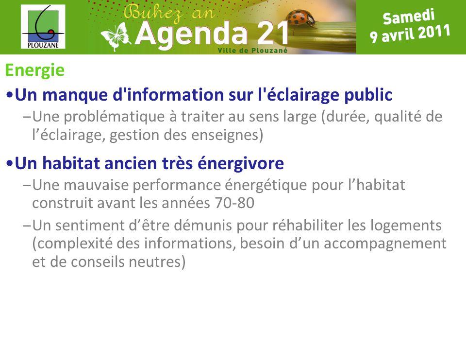 Energie Un manque d'information sur l'éclairage public – Une problématique à traiter au sens large (durée, qualité de léclairage, gestion des enseigne