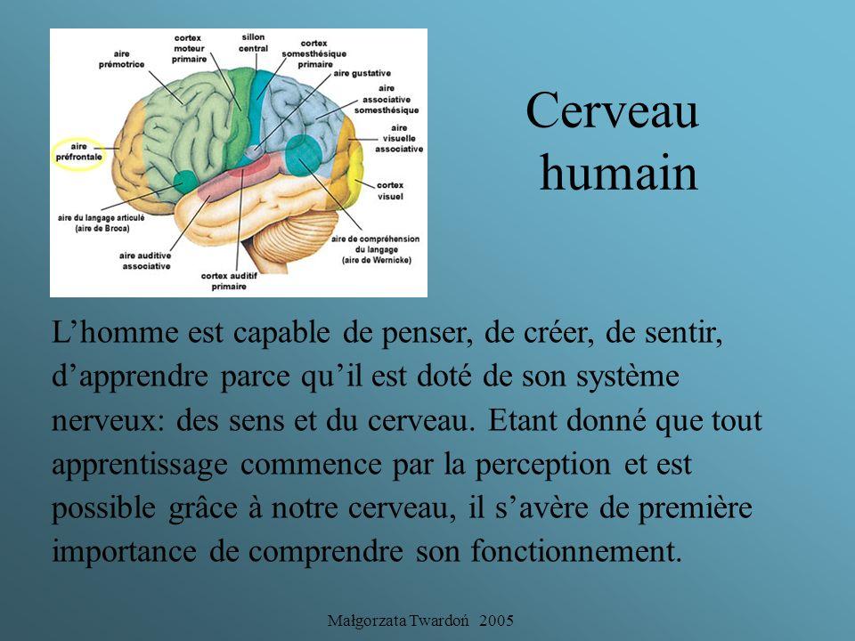 Małgorzata Twardoń 2005 Entre deux hémisphères et quatre cerveaux. Introduction à la neuro-pédagogie.