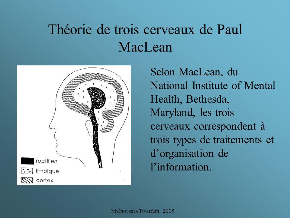 Małgorzata Twardoń 2005 Le cerveau triunique de Paul Mac Lean