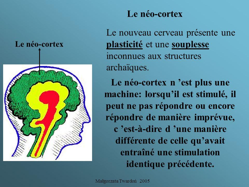 Małgorzata Twardoń 2005 Le filtre fonctionne selon les souvenirs agréables ou désagréables. Le système limbique assure le début de la connaissance par