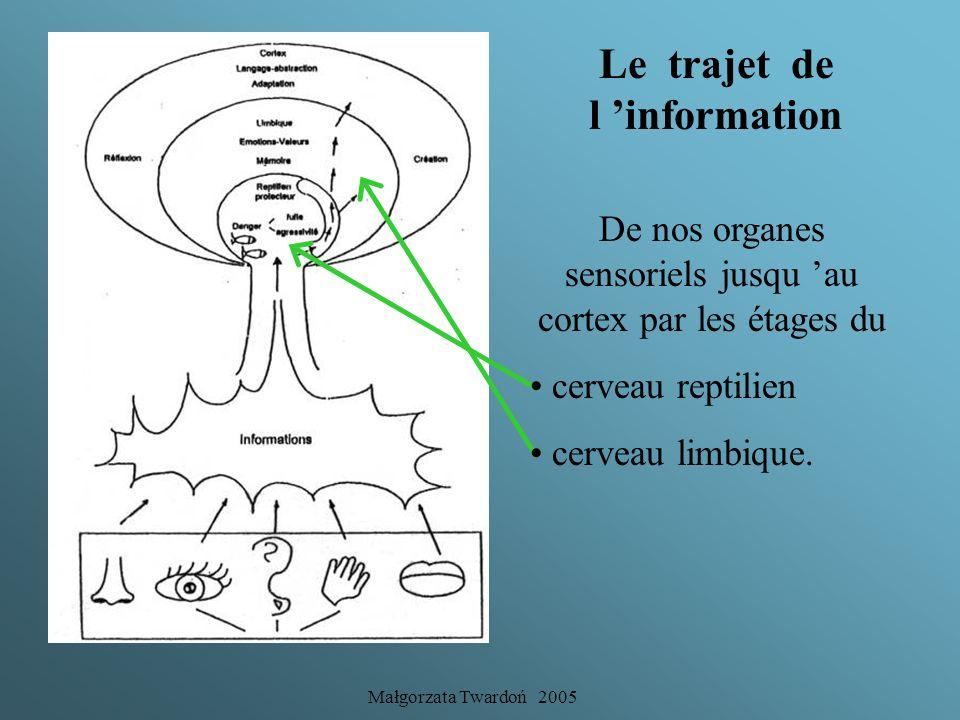 Małgorzata Twardoń 2005 Nos cerveaux et apprentissage Toute intervention pédagogique devra tenter de réconcilier le cognitif avec sa base affective so
