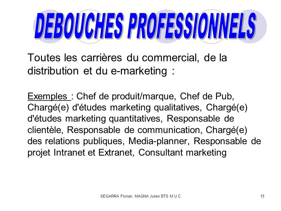 SEGARRA Florian, MAGNA Julien BTS M.U.C15 Toutes les carrières du commercial, de la distribution et du e-marketing : Exemples : Chef de produit/marque