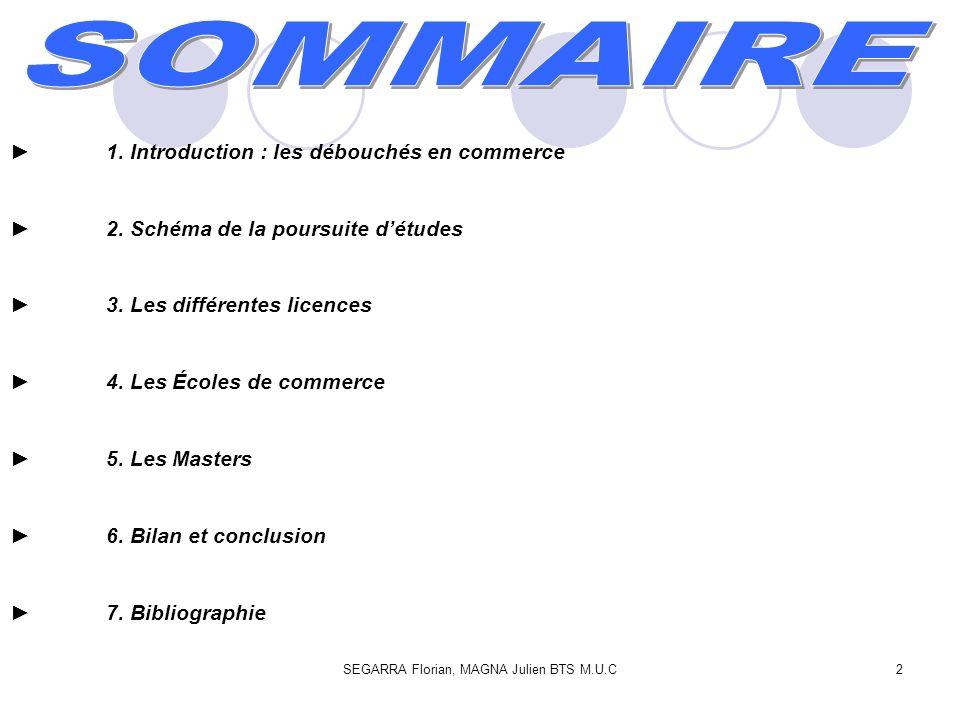 2 1. Introduction : les débouchés en commerce 2. Schéma de la poursuite détudes 3. Les différentes licences 4. Les Écoles de commerce 5. Les Masters 6