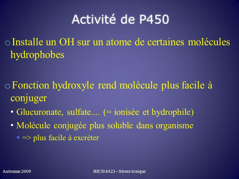 Activité de P450 o Installe un OH sur un atome de certaines molécules hydrophobes o Fonction hydroxyle rend molécule plus facile à conjuger Glucuronat