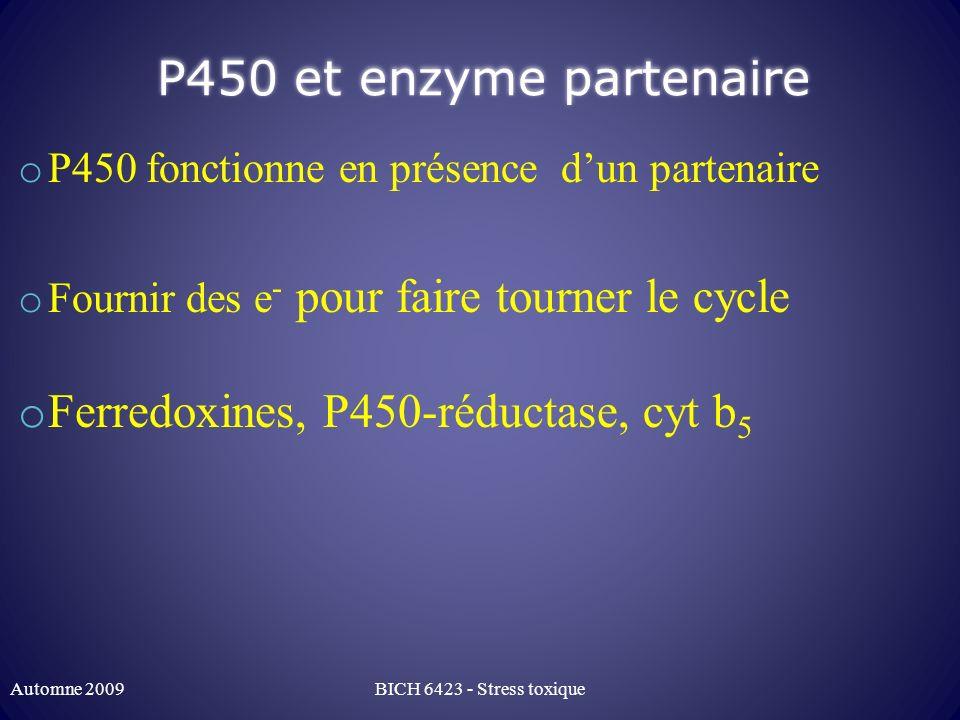 P450 et enzyme partenaire o P450 fonctionne en présence dun partenaire o Fournir des e - pour faire tourner le cycle o Ferredoxines, P450-réductase, c