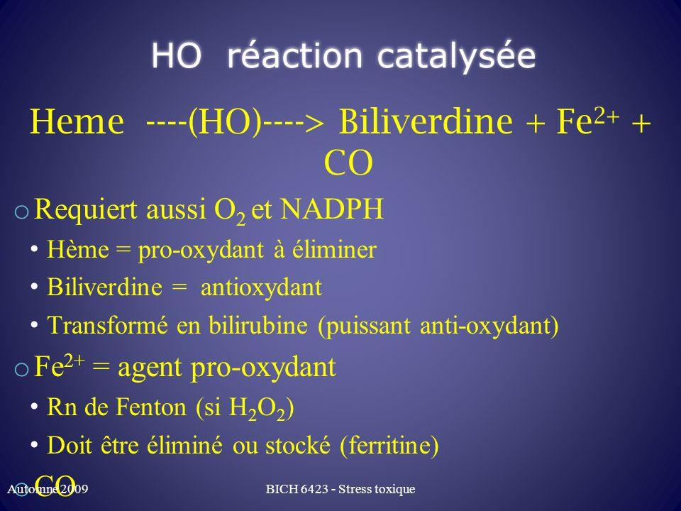 HO réaction catalysée Heme ----(HO)----> Biliverdine + Fe 2+ + CO o Requiert aussi O 2 et NADPH Hème = pro-oxydant à éliminer Biliverdine = antioxydan