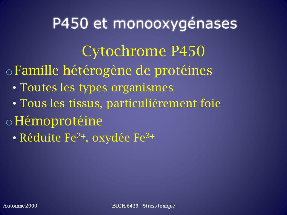 P450 et monooxygénases Cytochrome P450 o Famille hétérogène de protéines Toutes les types organismes Tous les tissus, particulièrement foie o Hémoprot