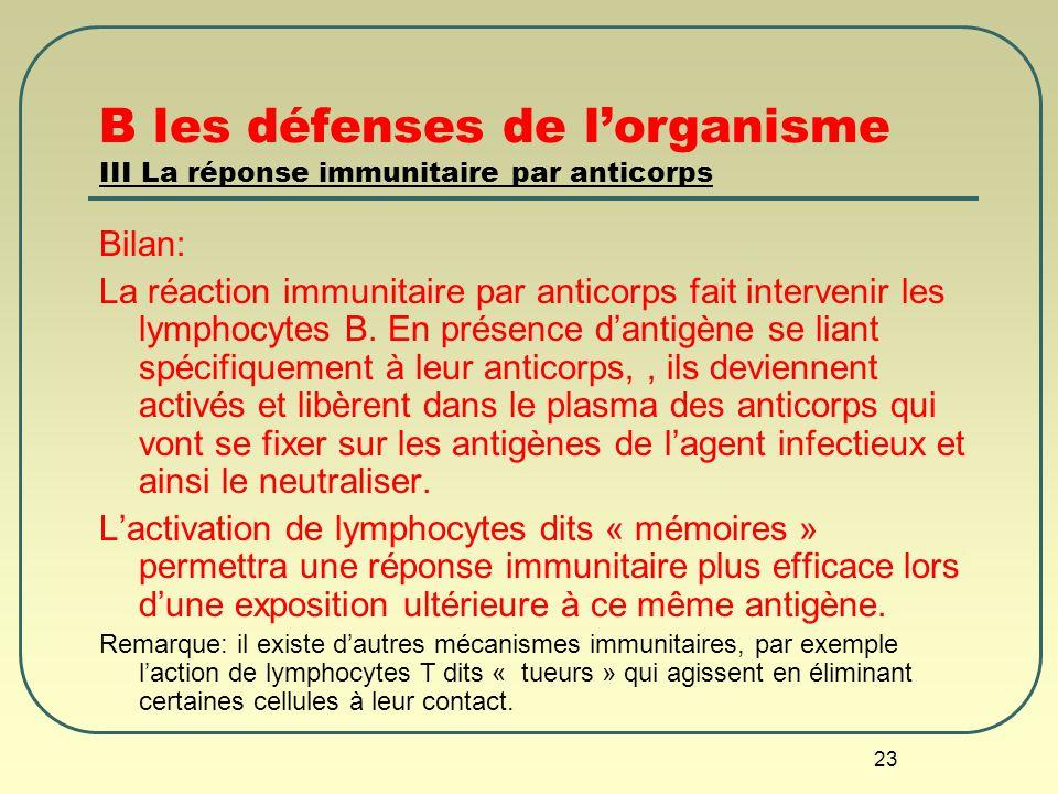 23 B les défenses de lorganisme III La réponse immunitaire par anticorps Bilan: La réaction immunitaire par anticorps fait intervenir les lymphocytes