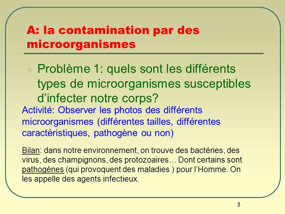 3 A: la contamination par des microorganismes Problème 1: quels sont les différents types de microorganismes susceptibles dinfecter notre corps? Bilan