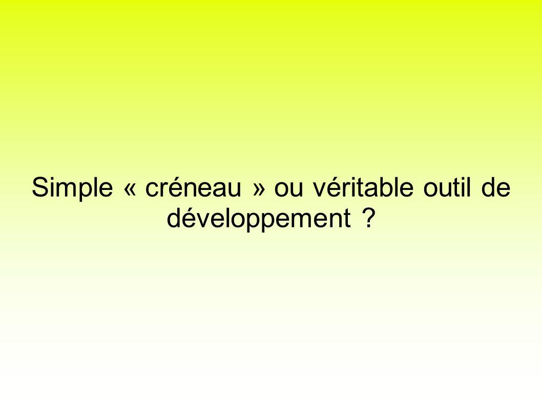 Simple « créneau » ou véritable outil de développement ?