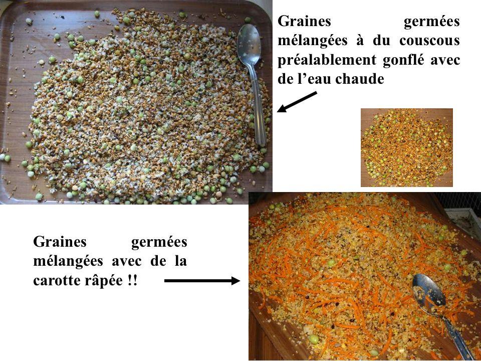 Graines germées mélangées à du couscous préalablement gonflé avec de leau chaude Graines germées mélangées avec de la carotte râpée !!