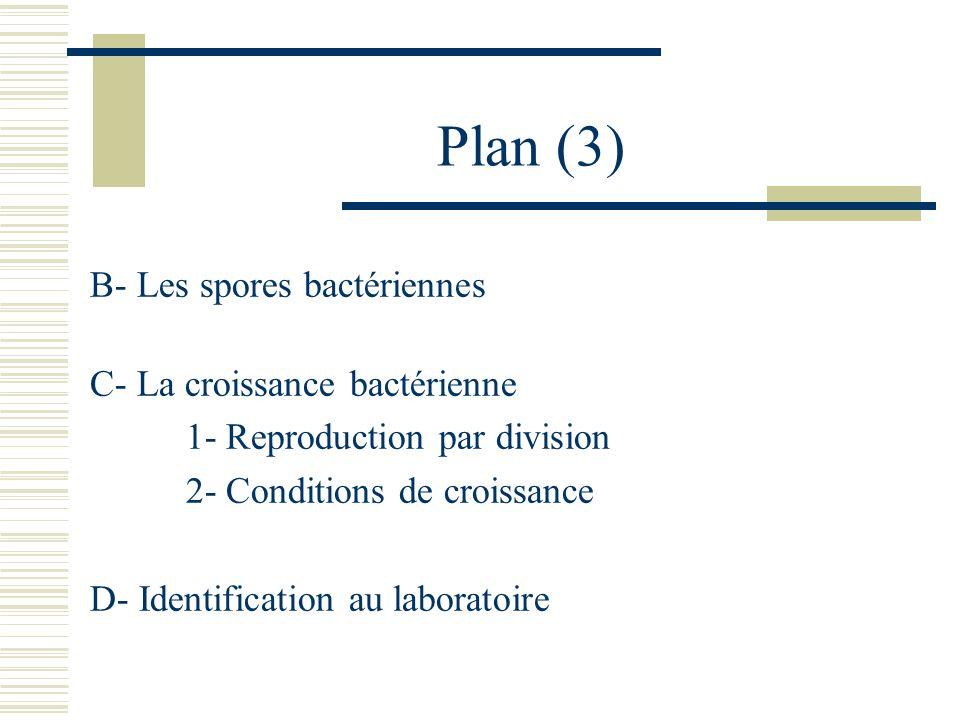 Plan (3) B- Les spores bactériennes C- La croissance bactérienne 1- Reproduction par division 2- Conditions de croissance D- Identification au laborat