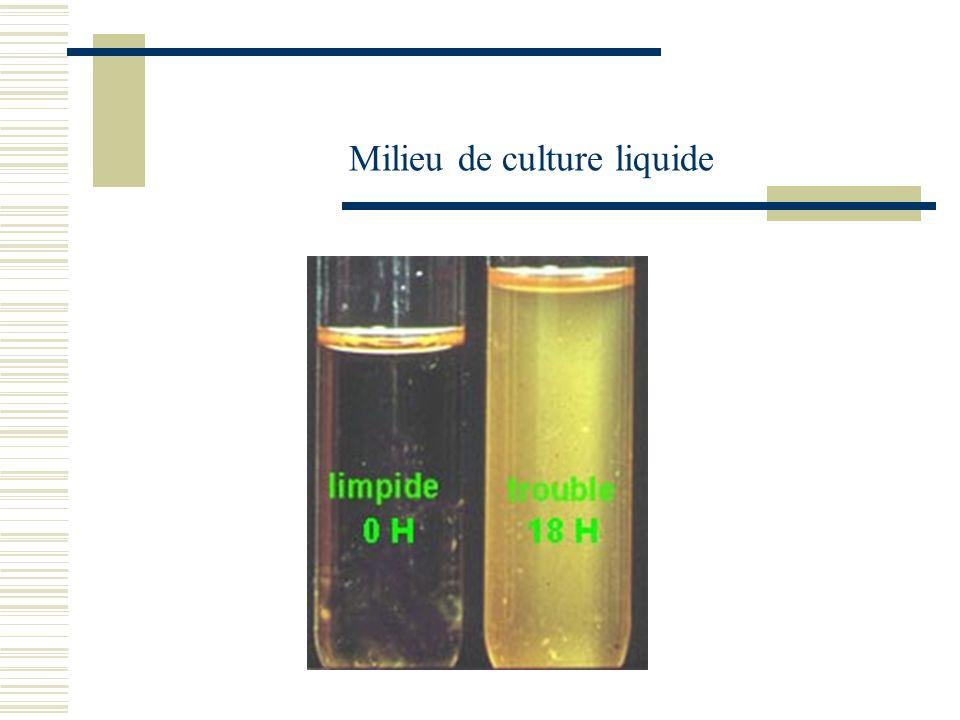 Milieu de culture liquide