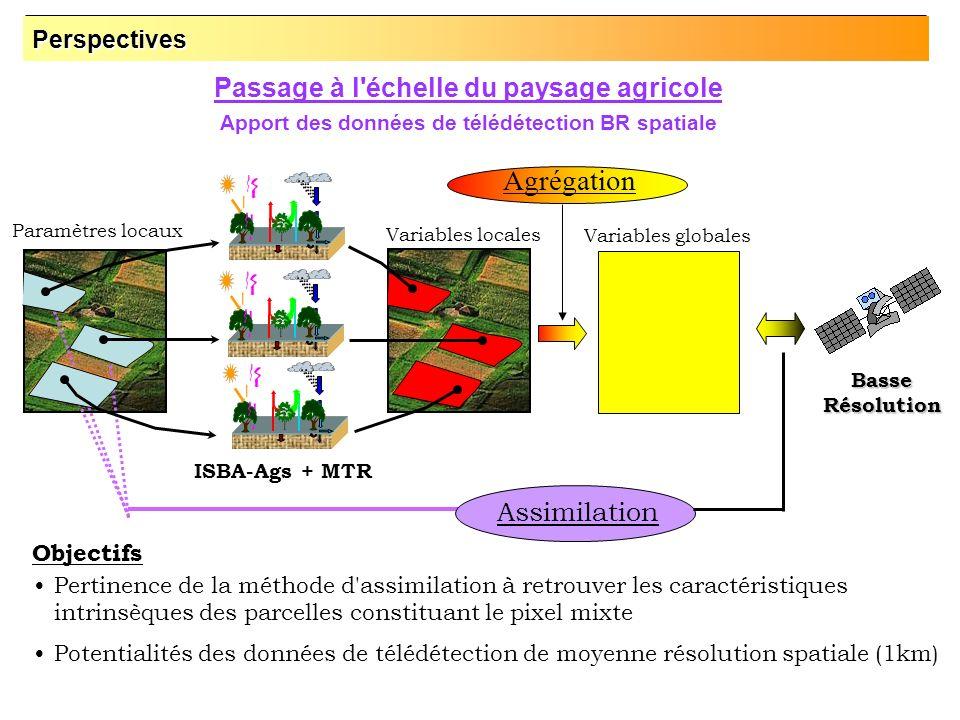 Passage à l'échelle du paysage agricole Apport des données de télédétection BR spatiale Pertinence de la méthode d'assimilation à retrouver les caract