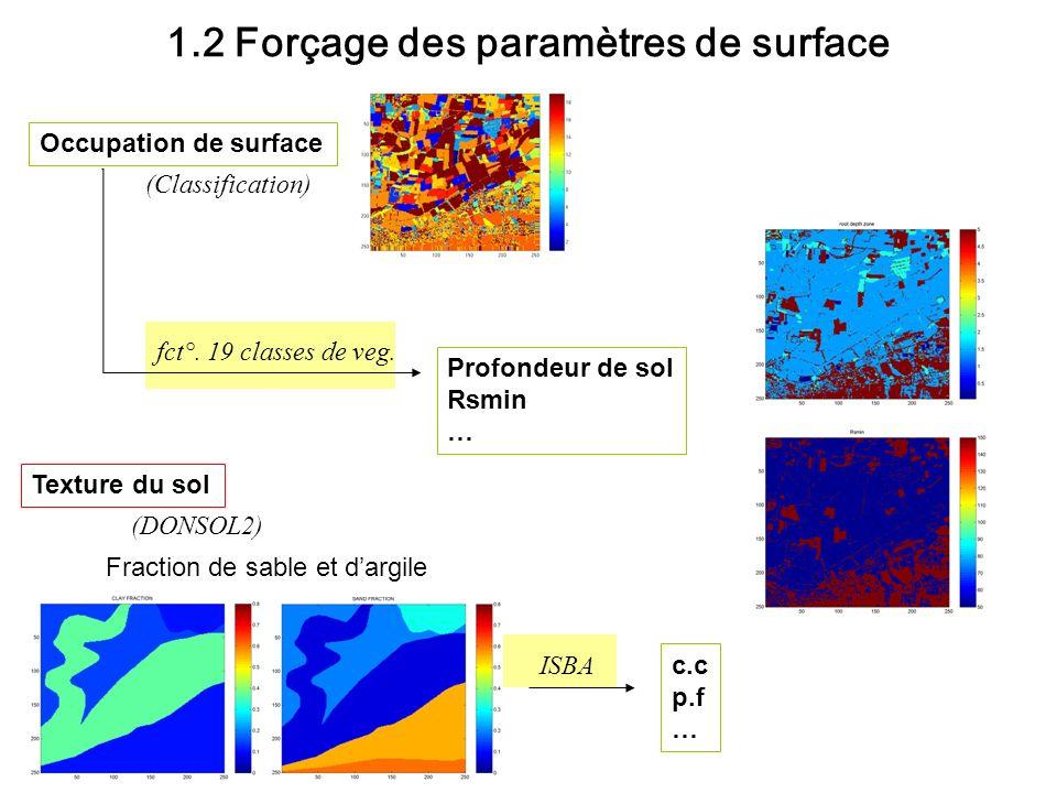 1.2 Forçage des paramètres de surface Occupation de surface fct°. 19 classes de veg. Texture du sol (Classification) Profondeur de sol Rsmin … Fractio