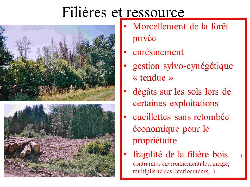 Filières et ressource Morcellement de la forêt privée enrésinement gestion sylvo-cynégétique « tendue » dégâts sur les sols lors de certaines exploita
