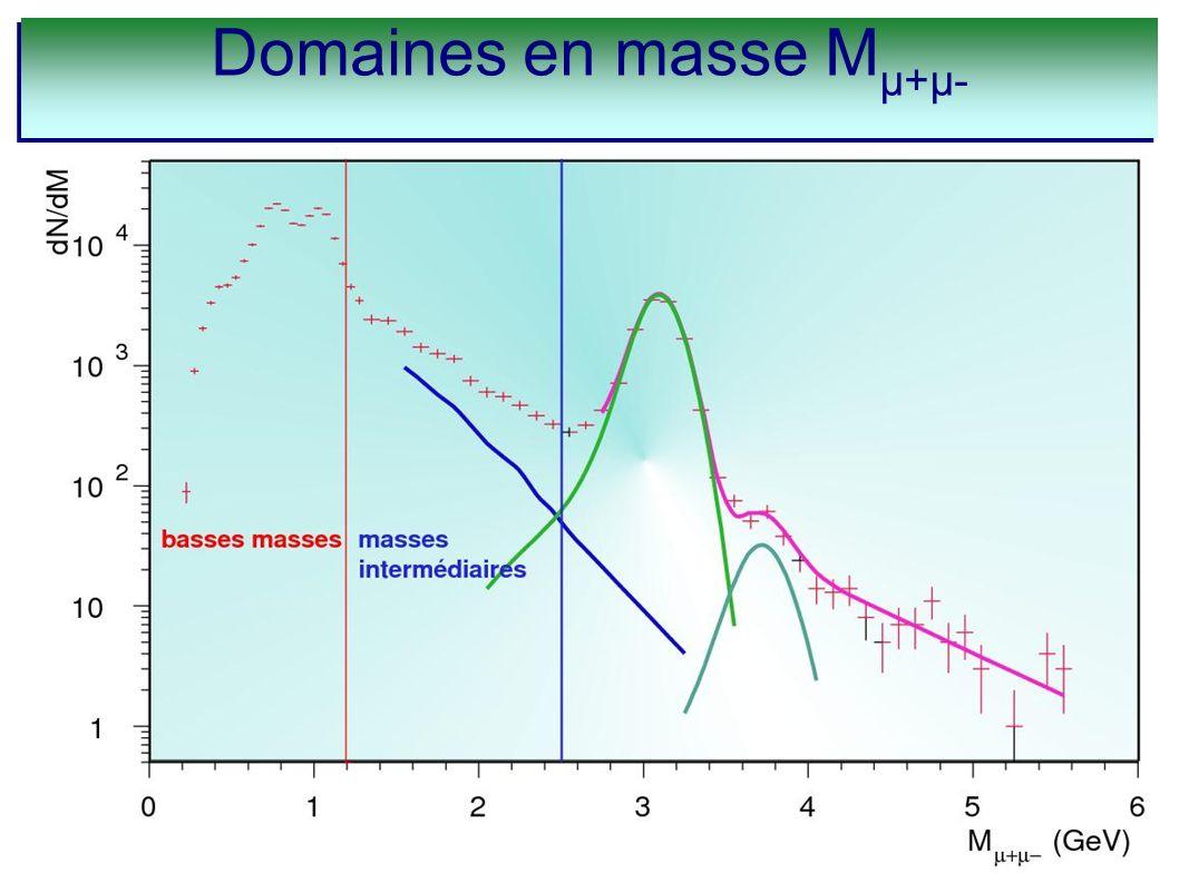 Domaines en masse M µ+µ-