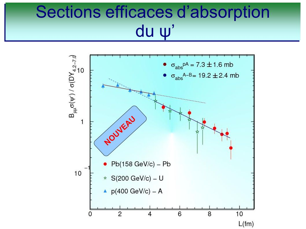 Sections efficaces dabsorption du ψ Sections efficaces dabsorption du ψ NOUVEAU