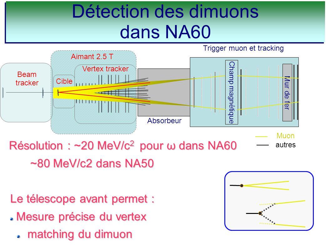 Absorbeur Trigger muon et tracking Champ magnétique Mur de fer Muon autres Aimant 2.5 T Beam tracker Vertex tracker Cible Résolution : ~20 MeV/c 2 pou