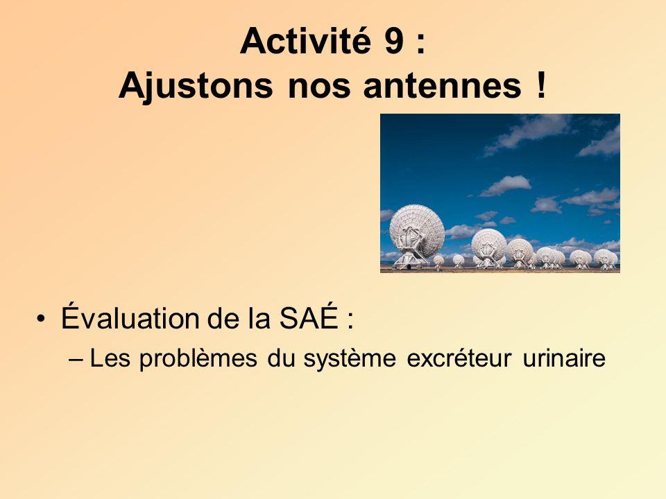 Activité 9 : Ajustons nos antennes ! Évaluation de la SAÉ : –Les problèmes du système excréteur urinaire