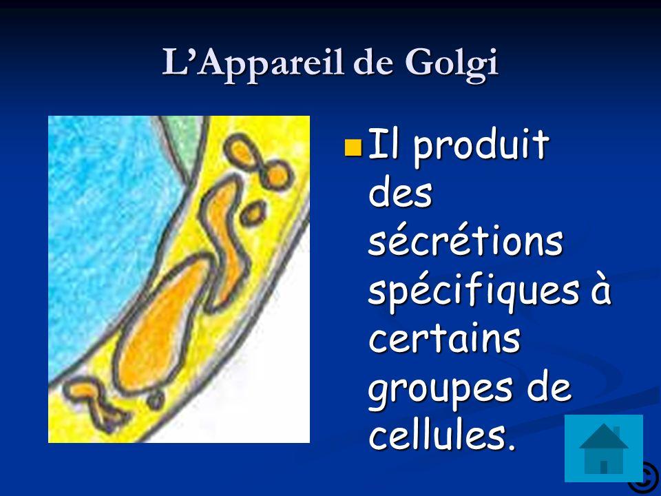 LAppareil de Golgi Il produit des sécrétions spécifiques à certains groupes de cellules.