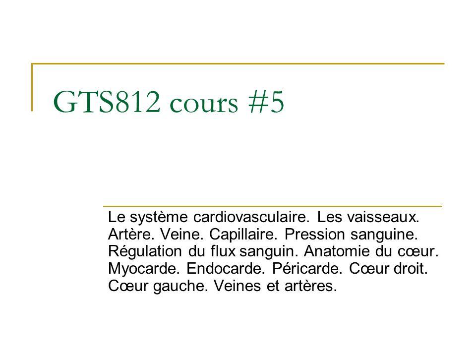GTS812 cours #5 Le système cardiovasculaire. Les vaisseaux. Artère. Veine. Capillaire. Pression sanguine. Régulation du flux sanguin. Anatomie du cœur