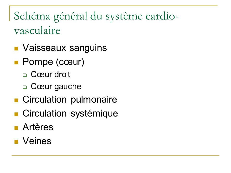 Schéma général du système cardio- vasculaire Vaisseaux sanguins Pompe (cœur) Cœur droit Cœur gauche Circulation pulmonaire Circulation systémique Artè