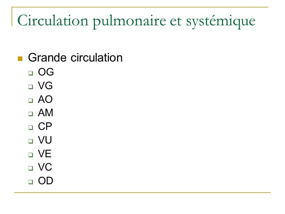 Circulation pulmonaire et systémique Grande circulation OG VG AO AM CP VU VE VC OD