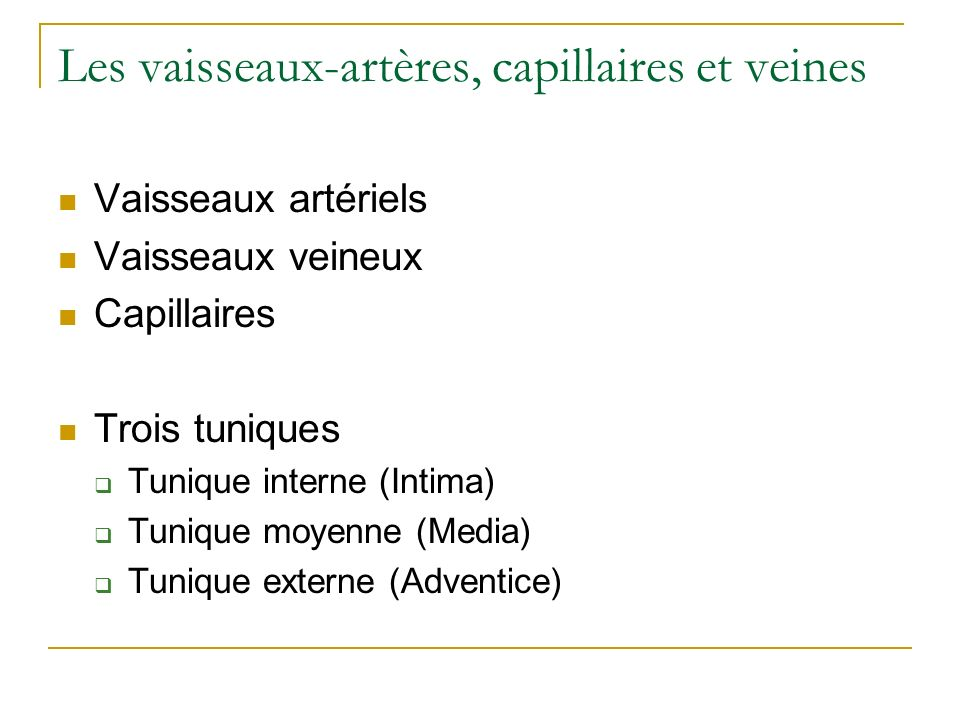 Les vaisseaux-artères, capillaires et veines Vaisseaux artériels Vaisseaux veineux Capillaires Trois tuniques Tunique interne (Intima) Tunique moyenne