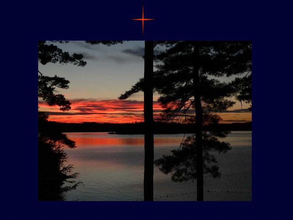«Si quelqu'un a soif, qu'il vienne à moi et qu'il boive celui qui croit en moi… …de son sein couleront des fleuves d'eau vive» Jn 7, 38