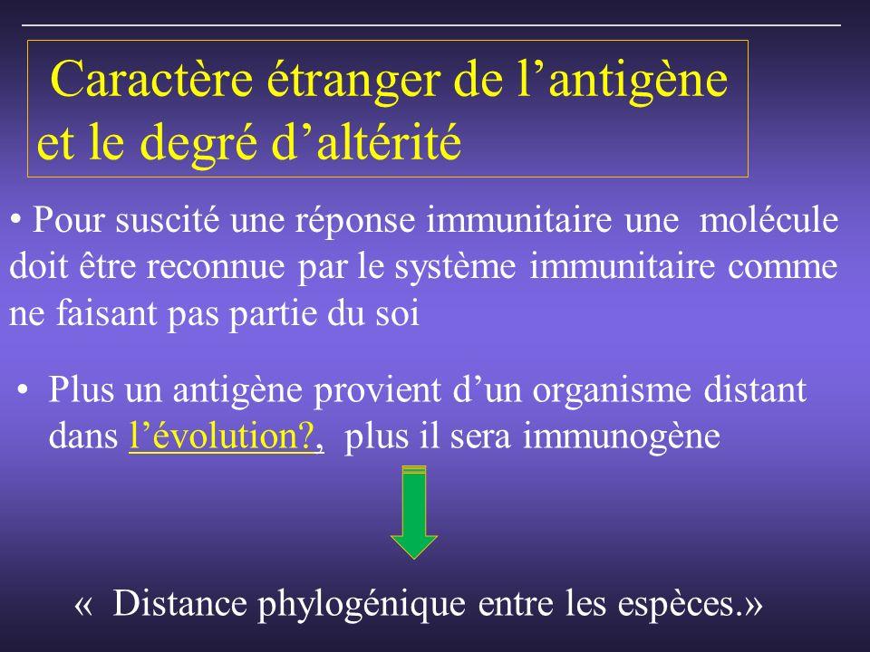Caractère étranger de lantigène et le degré daltérité Plus un antigène provient dun organisme distant dans lévolution?, plus il sera immunogène « Distance phylogénique entre les espèces.» Pour suscité une réponse immunitaire une molécule doit être reconnue par le système immunitaire comme ne faisant pas partie du soi