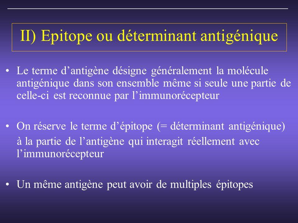 II) Epitope ou déterminant antigénique Le terme dantigène désigne généralement la molécule antigénique dans son ensemble même si seule une partie de celle-ci est reconnue par limmunorécepteur On réserve le terme dépitope (= déterminant antigénique) à la partie de lantigène qui interagit réellement avec limmunorécepteur Un même antigène peut avoir de multiples épitopes