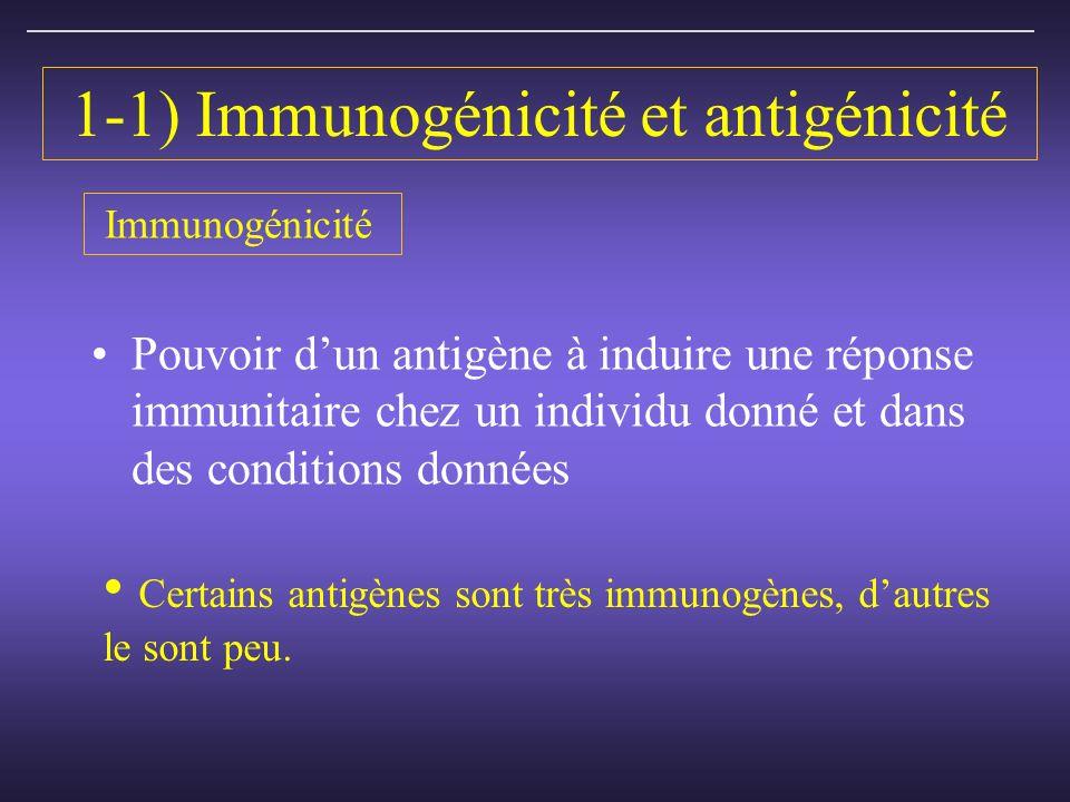 1-1) Immunogénicité et antigénicité Pouvoir dun antigène à induire une réponse immunitaire chez un individu donné et dans des conditions données Certains antigènes sont très immunogènes, dautres le sont peu.
