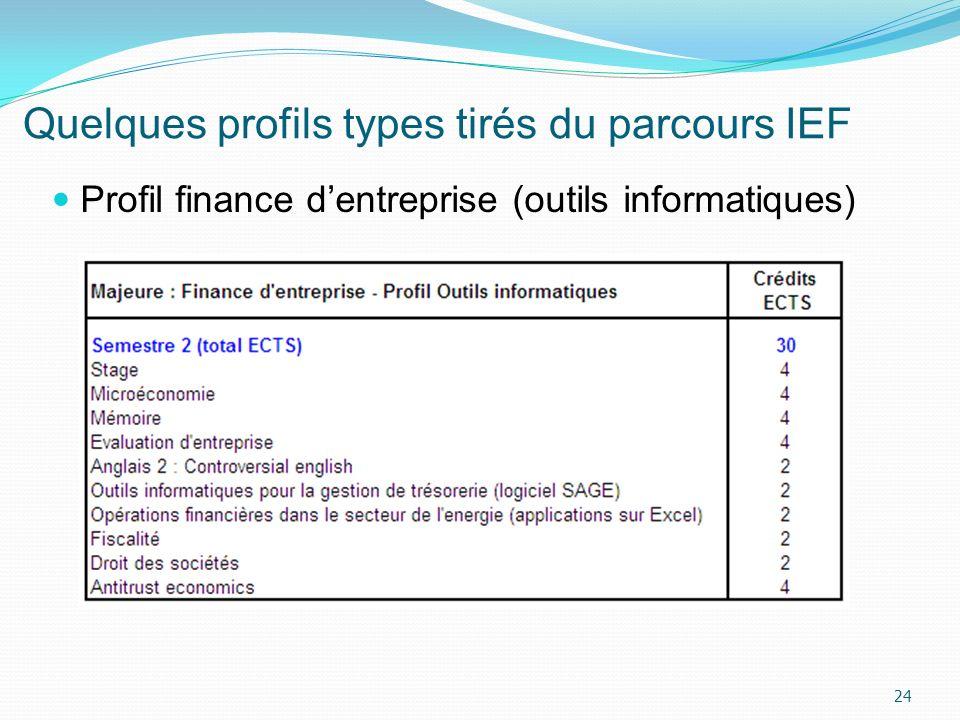 Quelques profils types tirés du parcours IEF 24 Profil finance dentreprise (outils informatiques)