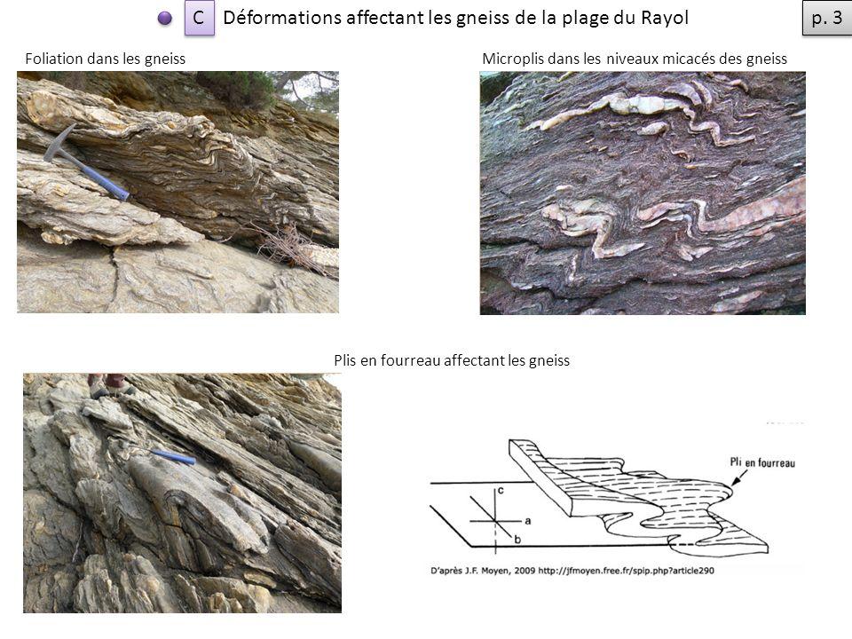 Déformations affectant les gneiss de la plage du Rayol Foliation dans les gneiss Plis en fourreau affectant les gneiss Microplis dans les niveaux micacés des gneiss C C p.