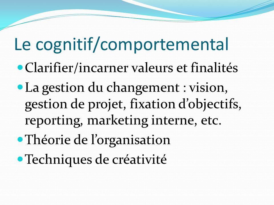 Le cognitif/comportemental Clarifier/incarner valeurs et finalités La gestion du changement : vision, gestion de projet, fixation dobjectifs, reportin