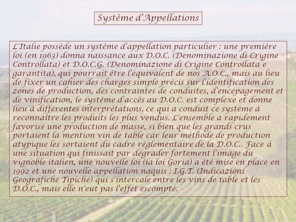 Système d'Appellations L'Italie possède un système d'appellation particulier : une première loi (en 1963) donna naissance aux D.O.C. (Denominazione di