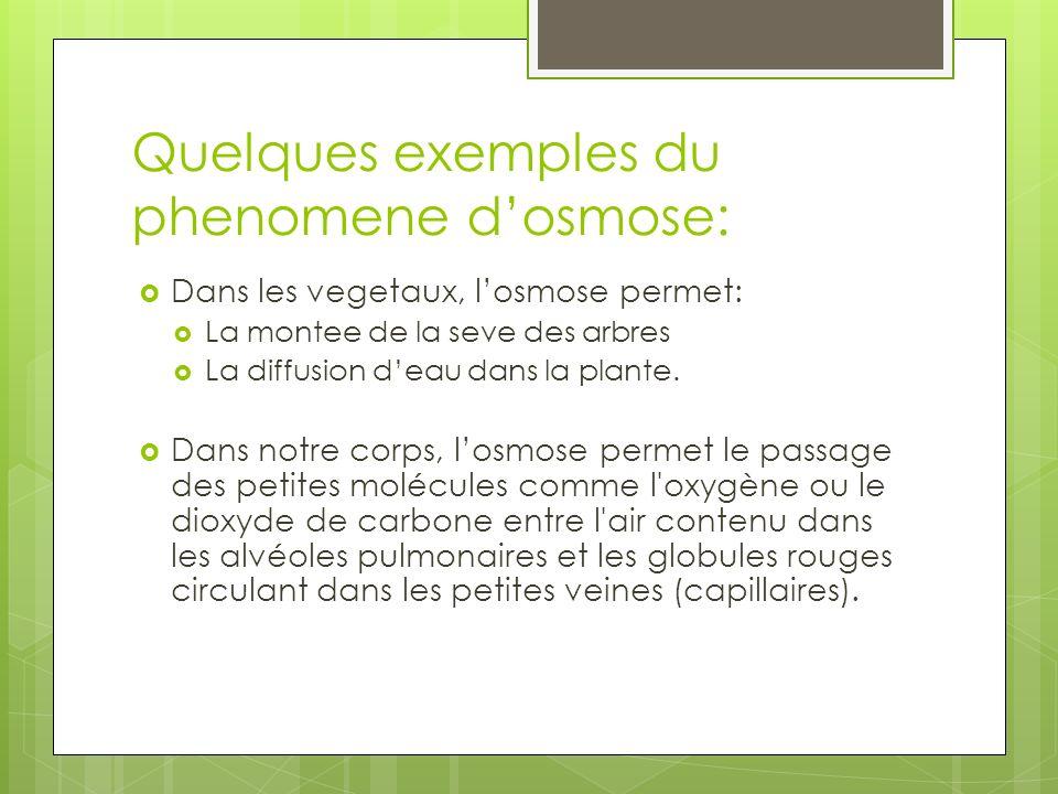 Quelques exemples du phenomene dosmose: Dans les vegetaux, losmose permet: La montee de la seve des arbres La diffusion deau dans la plante. Dans notr